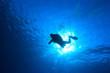 Silhouette of scuba diver in the oean