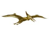 Fototapeta Dinusie - pterodactyl