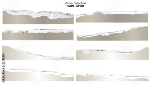 Fotografía  Collection of torn papers on white background, vector