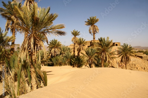 Garden Poster Natural Park premières dunes du Sahara