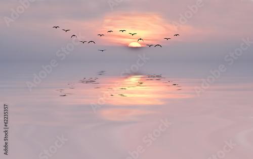 Leinwand Poster amanecer de colores suaves