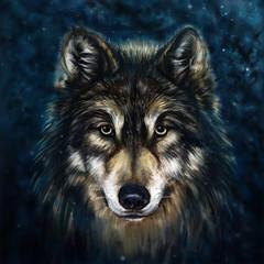 Fototapeta wolf front