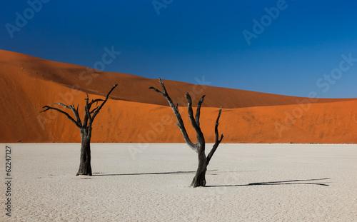 martwe-drzewa-i-wydmy-w-deadvlei-namibia