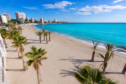 Fototapeta Alicante San Juan beach of La Albufereta with palms trees