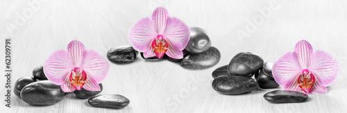 horyzontalna-panorama-z-rozowymi-orchideami-i-zen-kamieniami-na-drewnianym