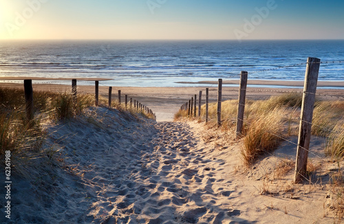 Fototapeten See sonnenuntergang path to North sea beach in gold sunshine