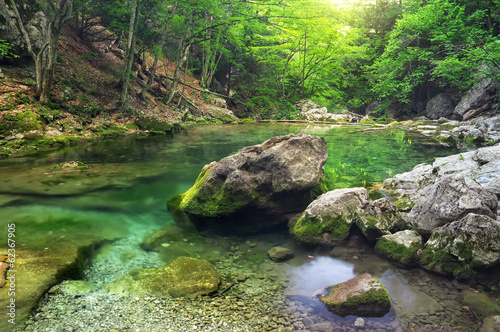 Mountain river in forest and mountain terrain.