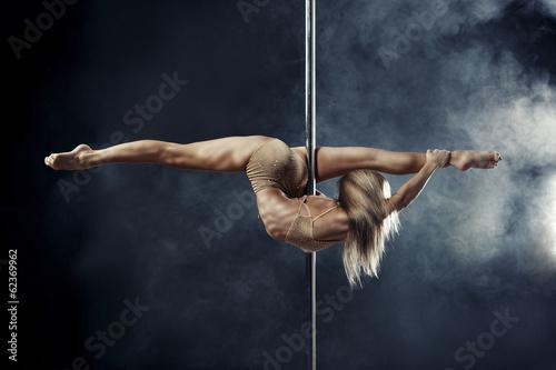 pole dance Canvas-taulu