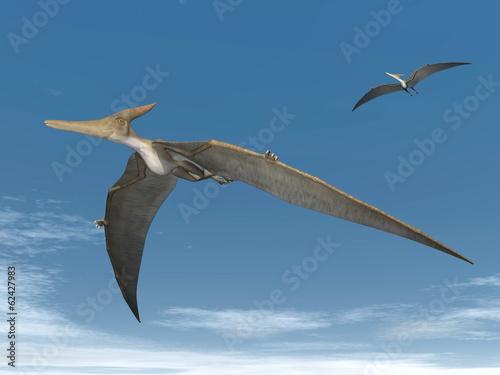 Photo  Pteranodon dinosaurs flying - 3D render