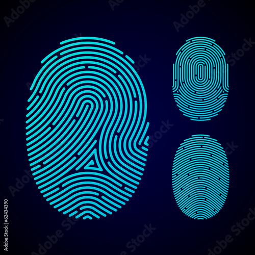 Types Of Fingerprint Patterns Arch Loop And Whorl Buy This Delectable Fingerprint Patterns