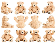 Teddy Bear In Different Positi...