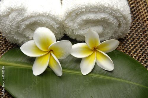 recznik-rolkowy-z-kwiatem-frangipani-na-lisciu-na-plotnie-tekstury