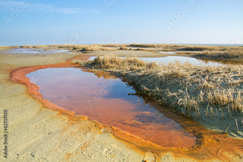 Keuken foto achterwand Turkoois Water spring in the dunes, precipitation of iron