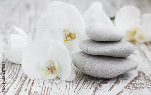 Αφίσα Orchids spa
