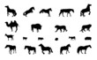 Silhouette of Wild and Domestic Animals. Black