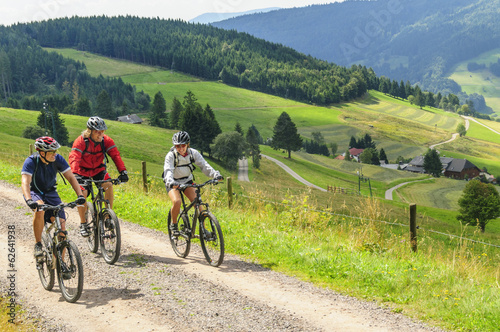 Tour mit dem Mountainbike Wallpaper Mural