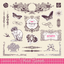 Floral Design Elements And Page Decoration