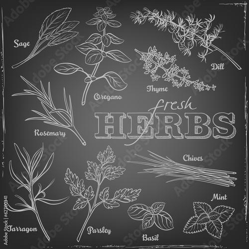 Fotografie, Obraz  Illustration of herbs on a chalkboard
