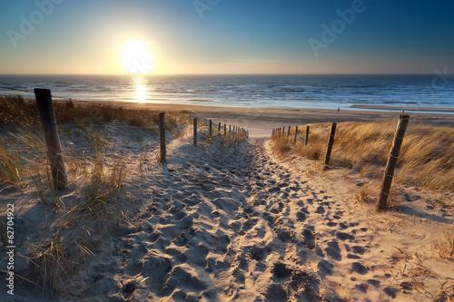 sunshine over path to beach in North sea
