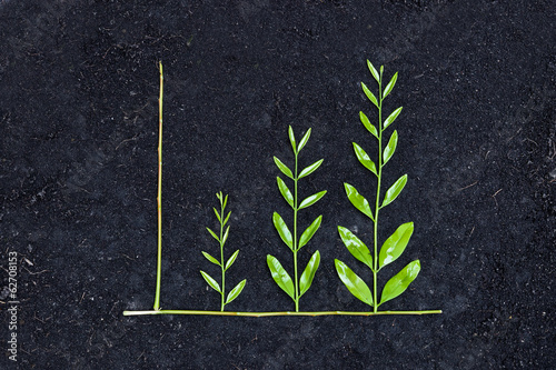 Fotografía  tree arranged as a green graph on soil