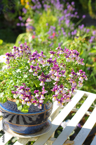 Fotomural Flores bonitas nemesis