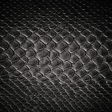 Snake Black Skin Leather Texture