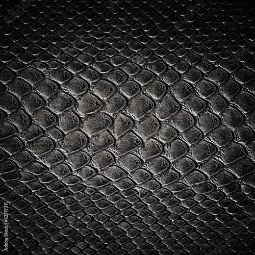 Snake black skin leather texture