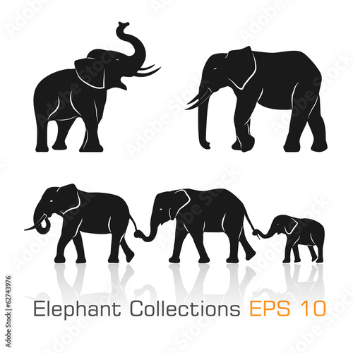 Photo  Set of black & white elephants in different poses