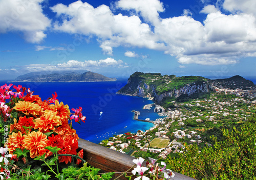Garden Poster Napels beautiful Capri island - Italian travel series