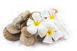 isolated of the balance stones with Frangipani flower is zen for