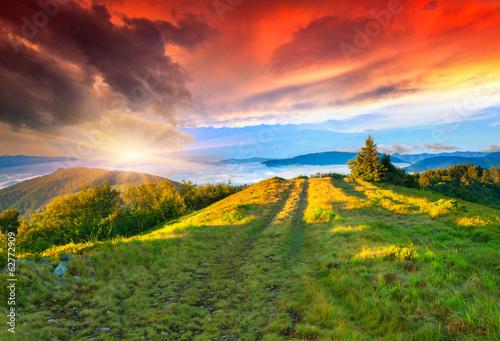 Foto op Aluminium Zalm Colorful summer sunrise in the mountains.