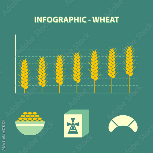 Photo  infographic with graph of increase wheat and bakery icons