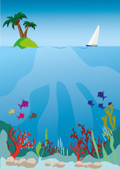 Fototapeta na wymiar marine life