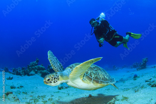 Foto op Canvas Duiken Sea Turtle and Scuba Diver