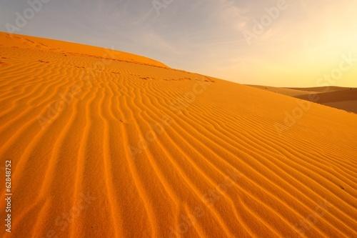 Poster de jardin Desert de sable Sand Pattern on Sand Dune