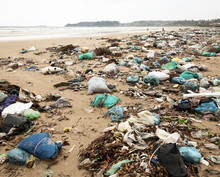 Trashed Beach
