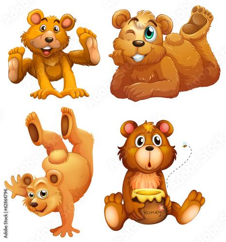 Four playful brown bears #62864794