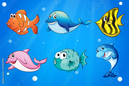 Aluminium Prints Submarine Colorful and smiling fishes under the sea
