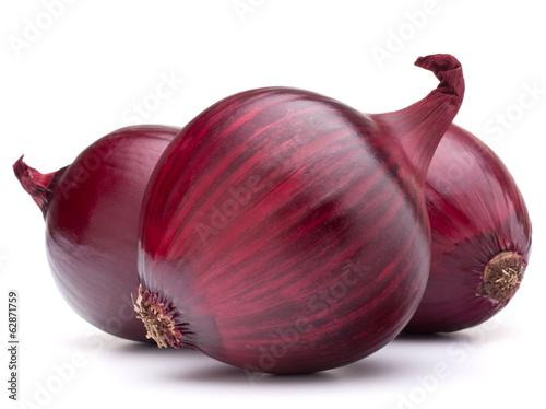 Fototapeta red onion bulb obraz