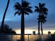 canvas print picture - Sunrise in tbe desert