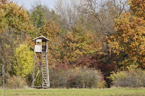 Foto op Canvas Jacht Autumn color forest with hunting stand