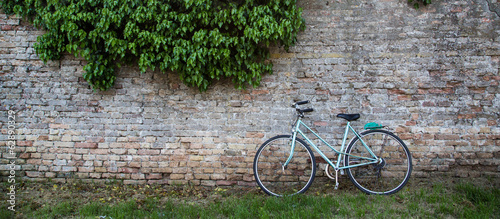 Aluminium Prints Bicycle Green Bike on Brick Wall