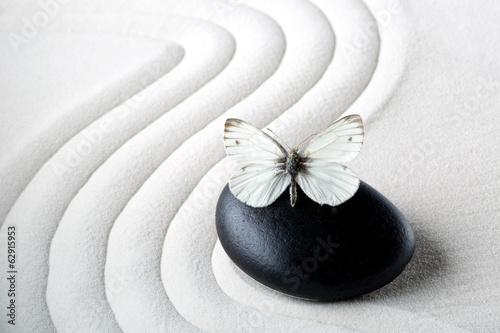 Zen stone with butterfly Canvas Print