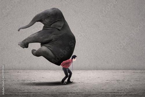 Fototapeta Businessman carry elephant on grey - leadership concept obraz