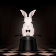Bunny rabbit in magic hat - Chess floor