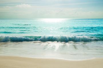 Fototapeta Morze tropical beach