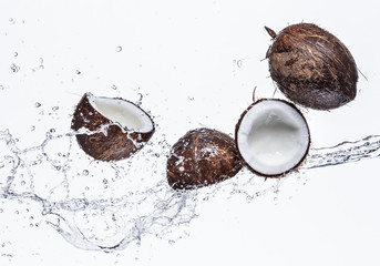 Coconuts with water splash