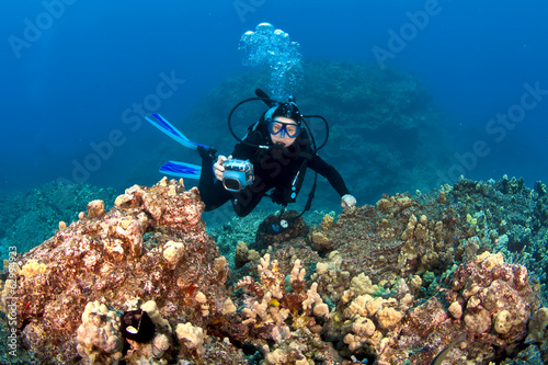 Fotografie, Obraz  Scuba Diver taking pictures on a Hawaiian Reef