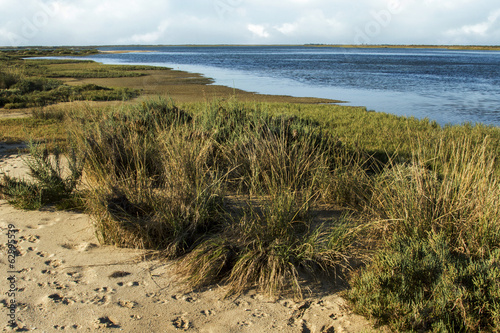 Fotografía  famous natural Ria Formosa marshlands