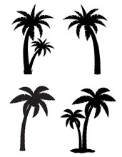 Palm Tropical Tree Set Icons B...